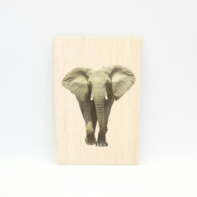 Houten fotokaart Olifant
