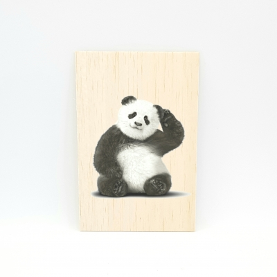 Houten fotokaart Panda
